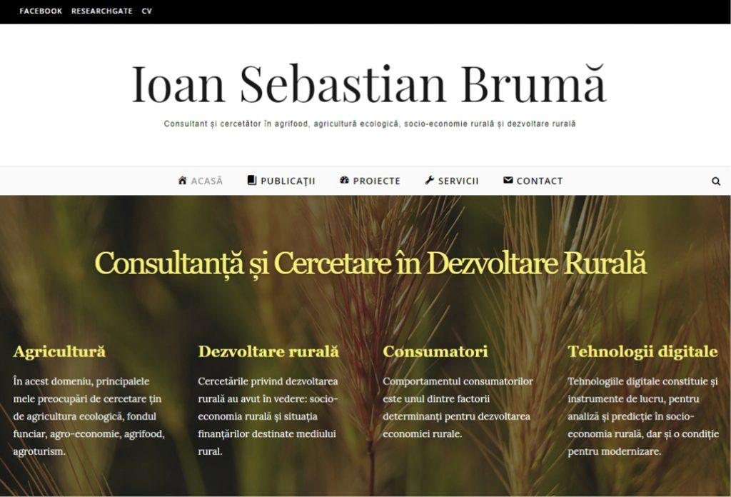ioan sebastian bruma website
